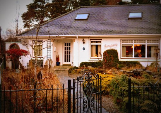 Junipers Guest House : Warm , Cozy Junipers in the Town Centre