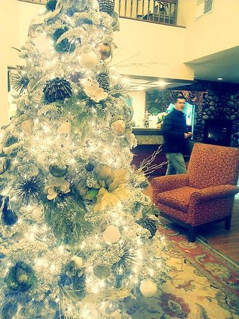 Country Inn & Suites By Carlson, Portland Airport: The lobby