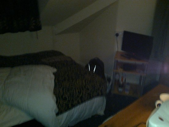 Ashburton House: my room a single with freeview TV