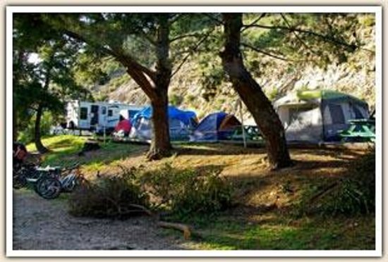 Avila Hot Springs Resort : Tent Camping