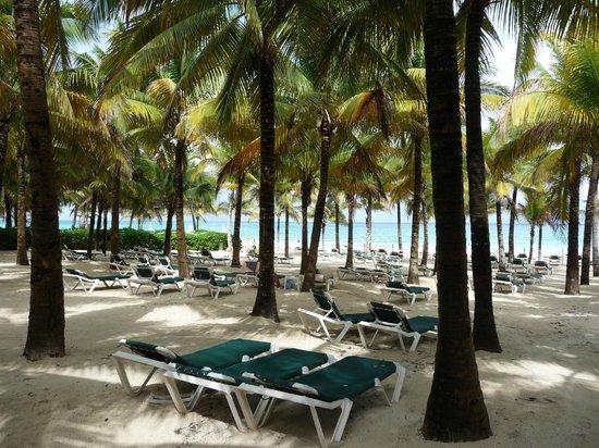 ريو لوبيتا أول إنكلوسف: plage privée de l'hôtel 