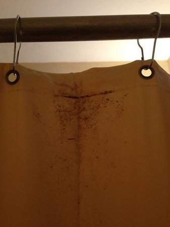WesternBay Boqueron Beach Hotel: Shower curtains with fungus!