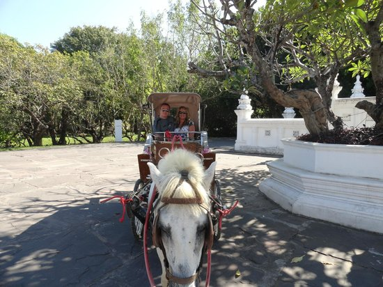 The Dhara Dhevi Chiang Mai: Horse and buggy tour around the grounds