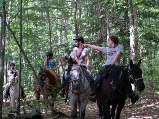 Patriot Farm at the Grand View Tours: Trail Ride at Patriot Farm at the Grand View