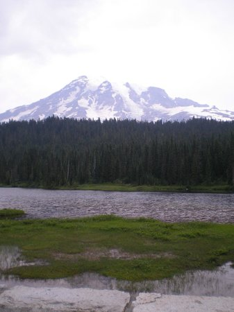 Tipsoo Lake Loop : Tipsoo Lake