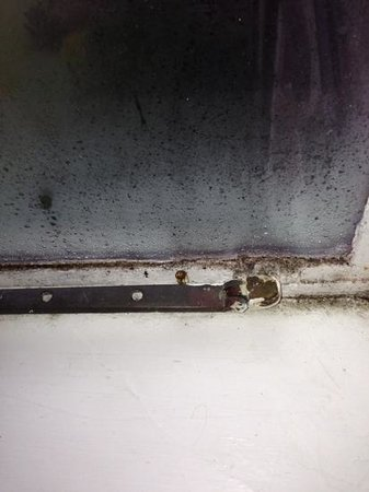 Graythwaite Manor Hotel: disgusting window frames