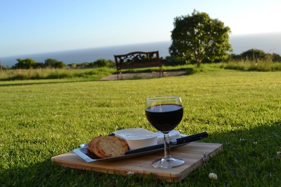 Dolphin View Chalets: Cheese and Wine with a wonderful view