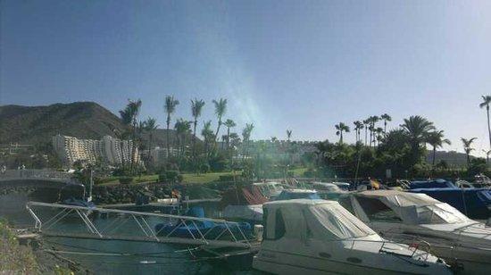 Marina Elite: marina at Anfi