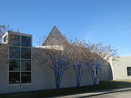 Samuel P. Harn Museum of Art: Crape Myrtle trunks painted blue