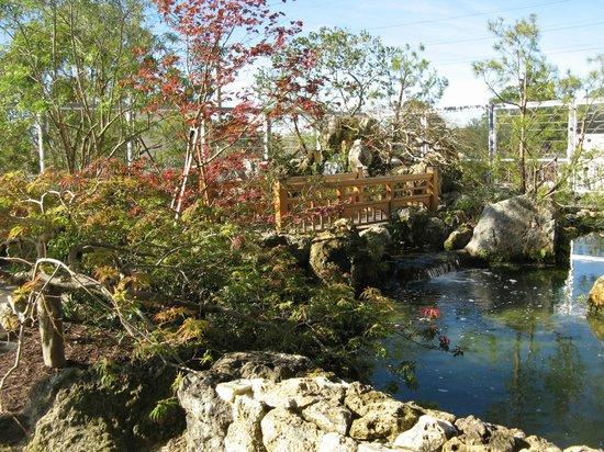 Samuel P. Harn Museum of Art : Chinese Garden