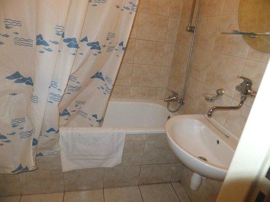 Aparthotel Lublanka: Bagno