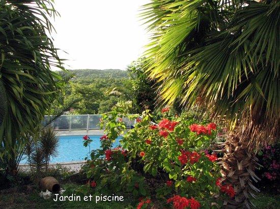 Villa Rose Caraibes : Jardin & piscine