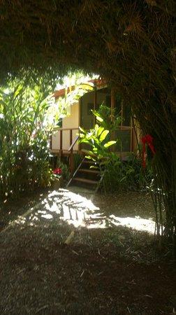 Bali Rica Casitas: Entrada a Casa Bamboo 