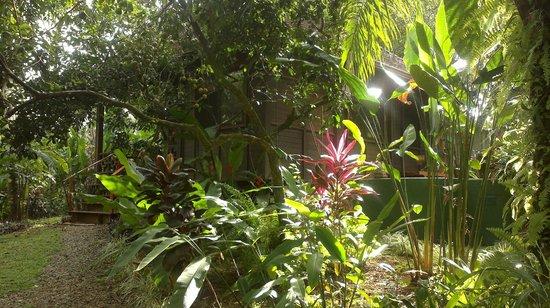 Bali Rica Casitas: Jardines