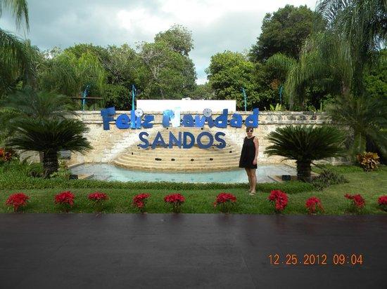 Sandos Playacar Beach Resort: Christmas Greeting