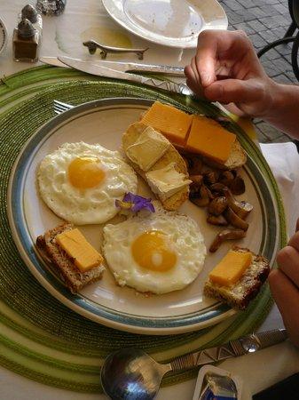 Centre-Ville Guest House: petit dejeuné préparé