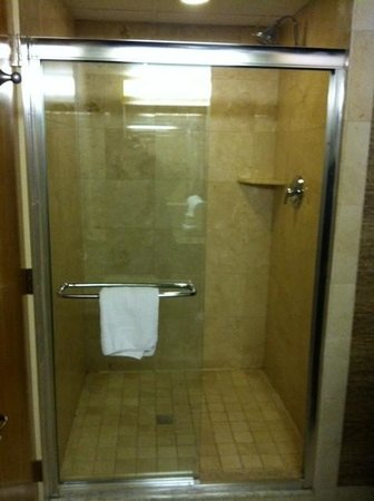Wyndham Garden Glen Mills Wilmington: very large nice shower