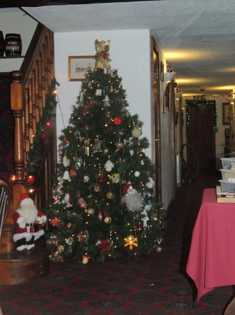 Nateby Inn: Christmas Tree in the bar