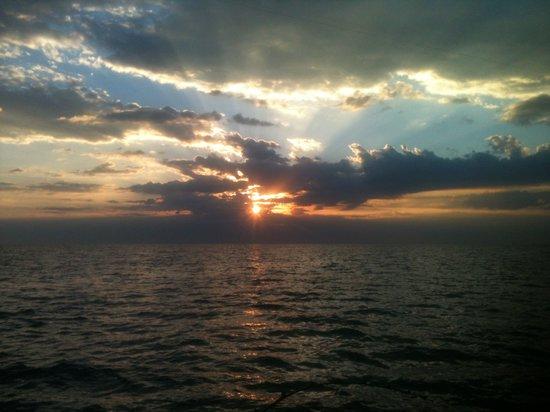 WindyCitySalmon: An everyday sunrise