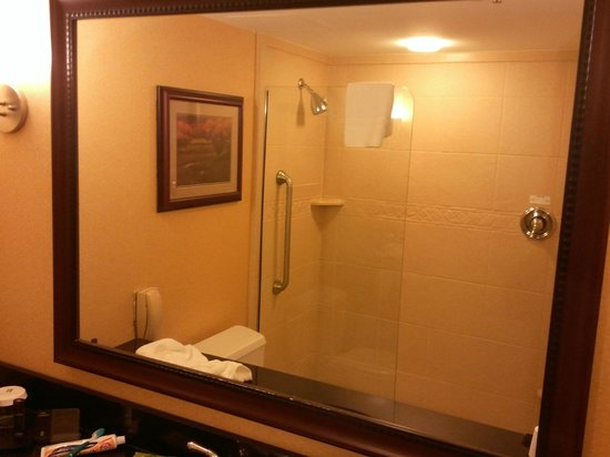 "Embassy Suites by Hilton Detroit - Troy/Auburn Hills: Example of a ""Euro"" shower"