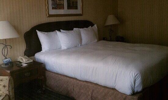 Hilton Pasadena: comfy bed and pillows