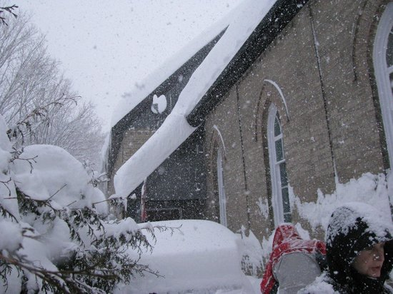 Spirit Bear Bed & Breakfast: Winter 2009