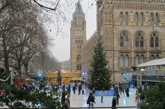 Ice Skating Natural History Museum Review