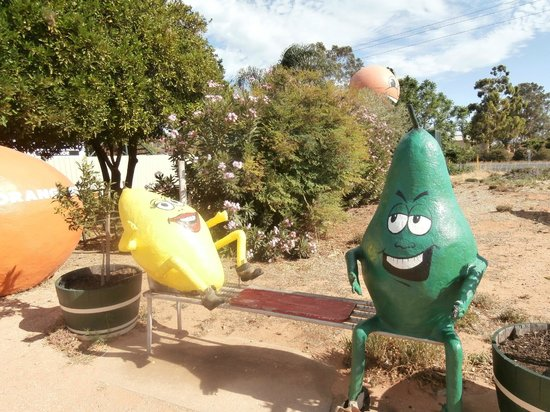 Buronga, Australia: Funny Fruits