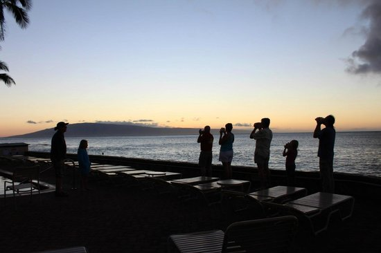 Kulakane: sunset conch ceremony