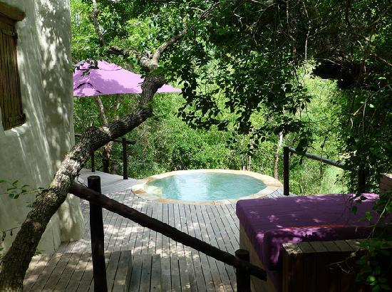 andBeyond Phinda Rock Lodge: view of pool and deck room 5.  pool wasn't as dramatically poised as other rooms but that made i