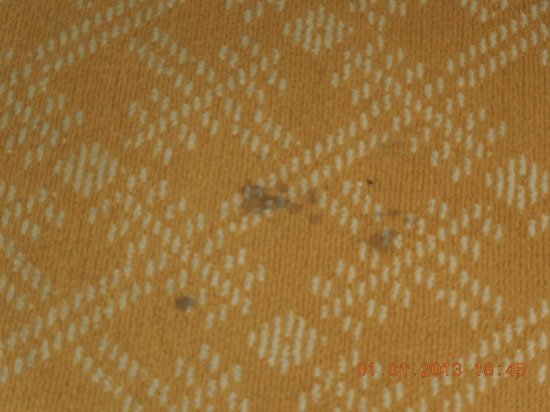 The Ritz-Carlton, Denver: Stained carpet in room