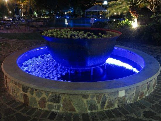 Coco Palm Resort : Fontaine à l'hotel