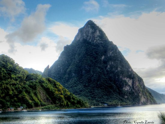 Coco Palm Resort: Le gros Piton