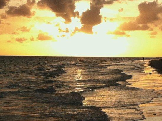 Island Seas Resort: sunset