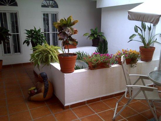 La Iguana de Oro: El descanso interior 2 piso
