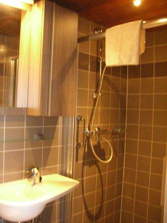 Hotel Leeuwenbrug: Bathroom