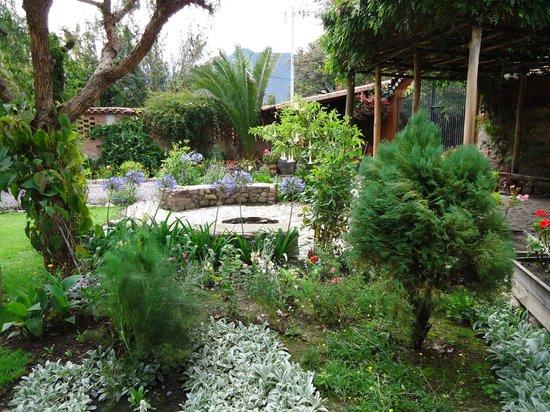 Añañau Restaurante: jardin del Ananau desde donde cosechan limones, frambuesas