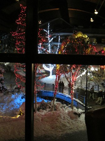 Whistler Blackcomb: Whistler Village at night