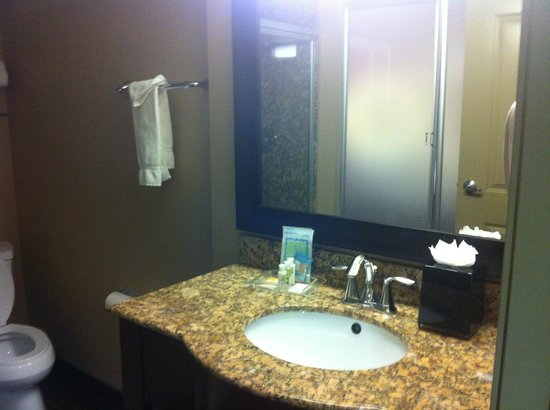 Holiday Inn Hotel & Suites Anaheim - Fullerton : Bathroom vanity