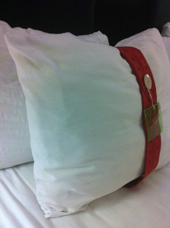 Holiday Inn Hotel & Suites Anaheim - Fullerton: Pillows