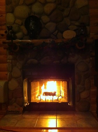 Treehouse Cottages: Fireplace