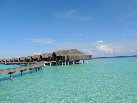 Anantara Kihavah Maldives Villas: Bungalows
