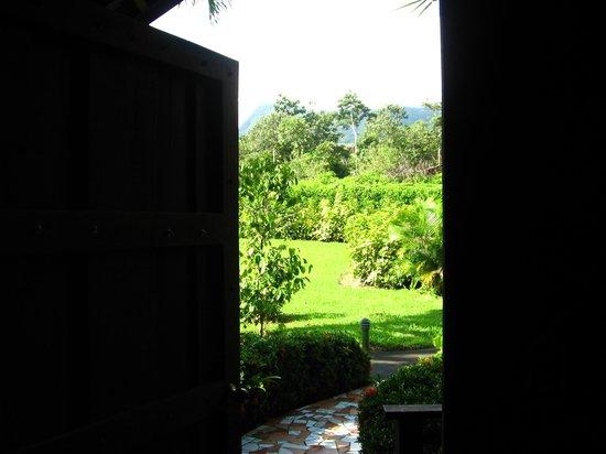 阿雷納綠色飯店照片