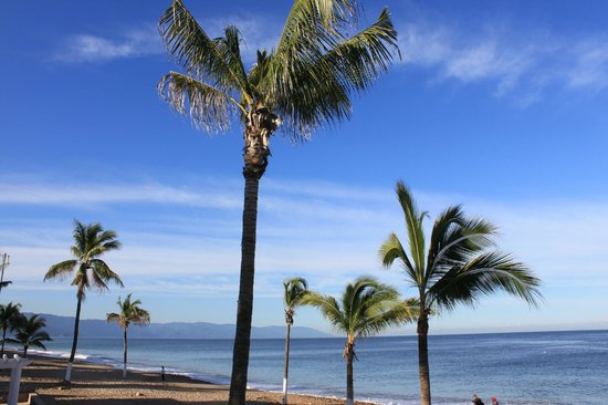 CasaMagna Marriott Puerto Vallarta Resort & Spa: Malecon