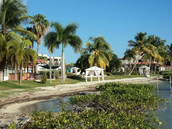 Photo 24 Bahia Salinas Beach Resort Spa
