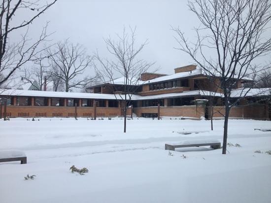 写真Frank Lloyd Wright's Darwin D. Martin House Complex枚