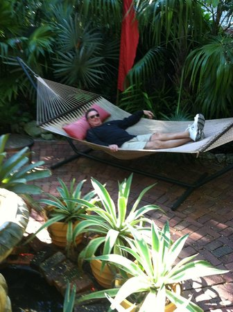 The Mermaid & The Alligator: Relaxing Hammock