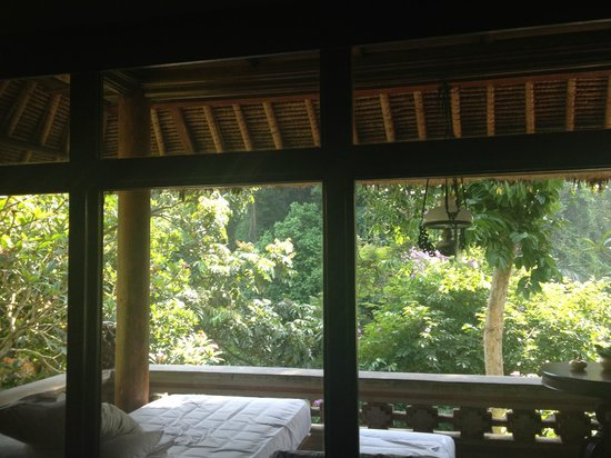 Hotel Tjampuhan & Spa: The view from the bedroom