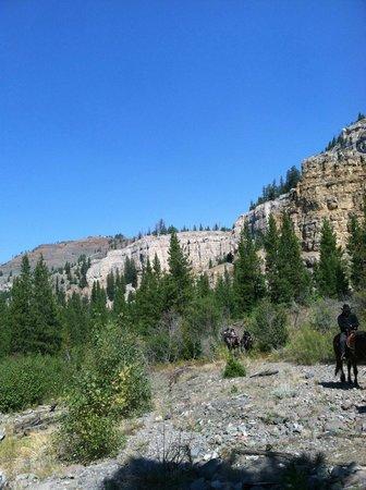 7D Ranch照片