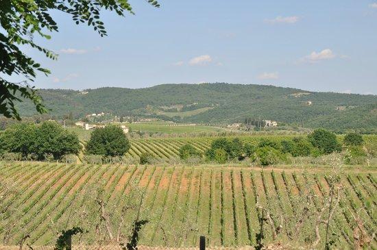 Villa Sant'Andrea: View from villa